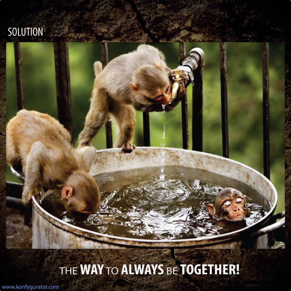 Funny pictures - the way to always be together
