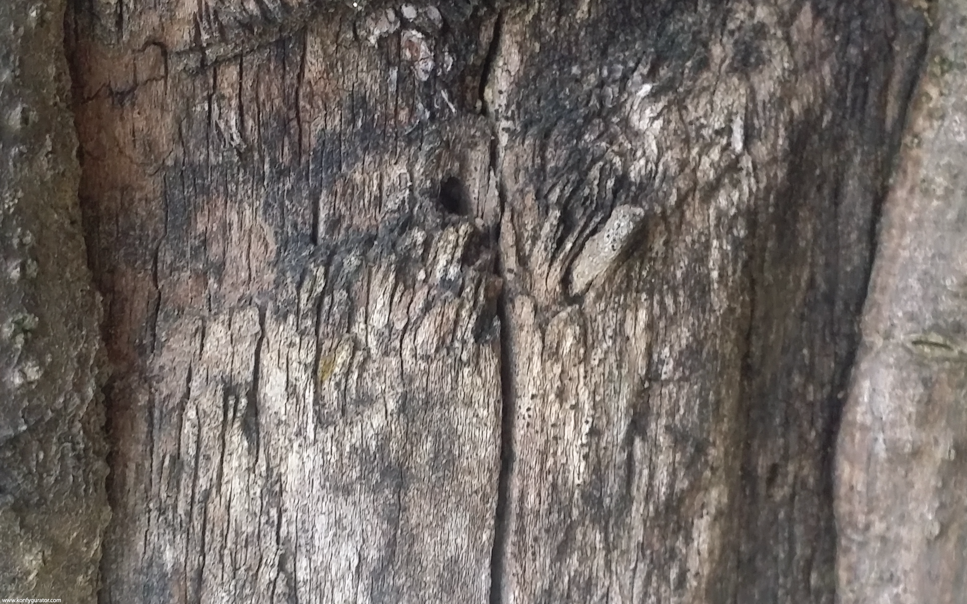 HD Wallpapers - Textures - depression, wood, old