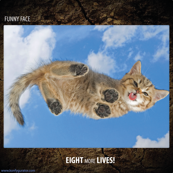 Funny Face - Eight More Lives!