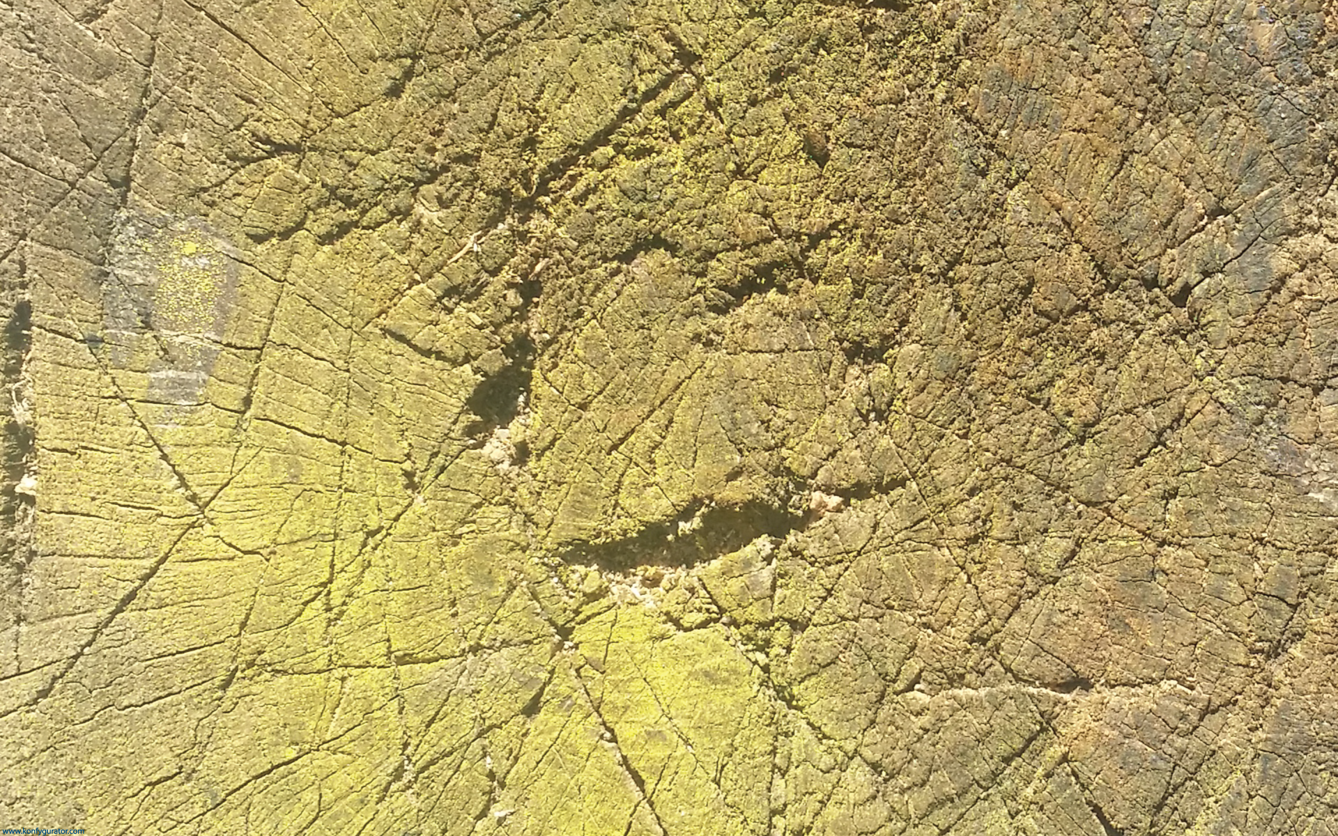 HD Wallpapers - Textures - yellow, cracked, wood